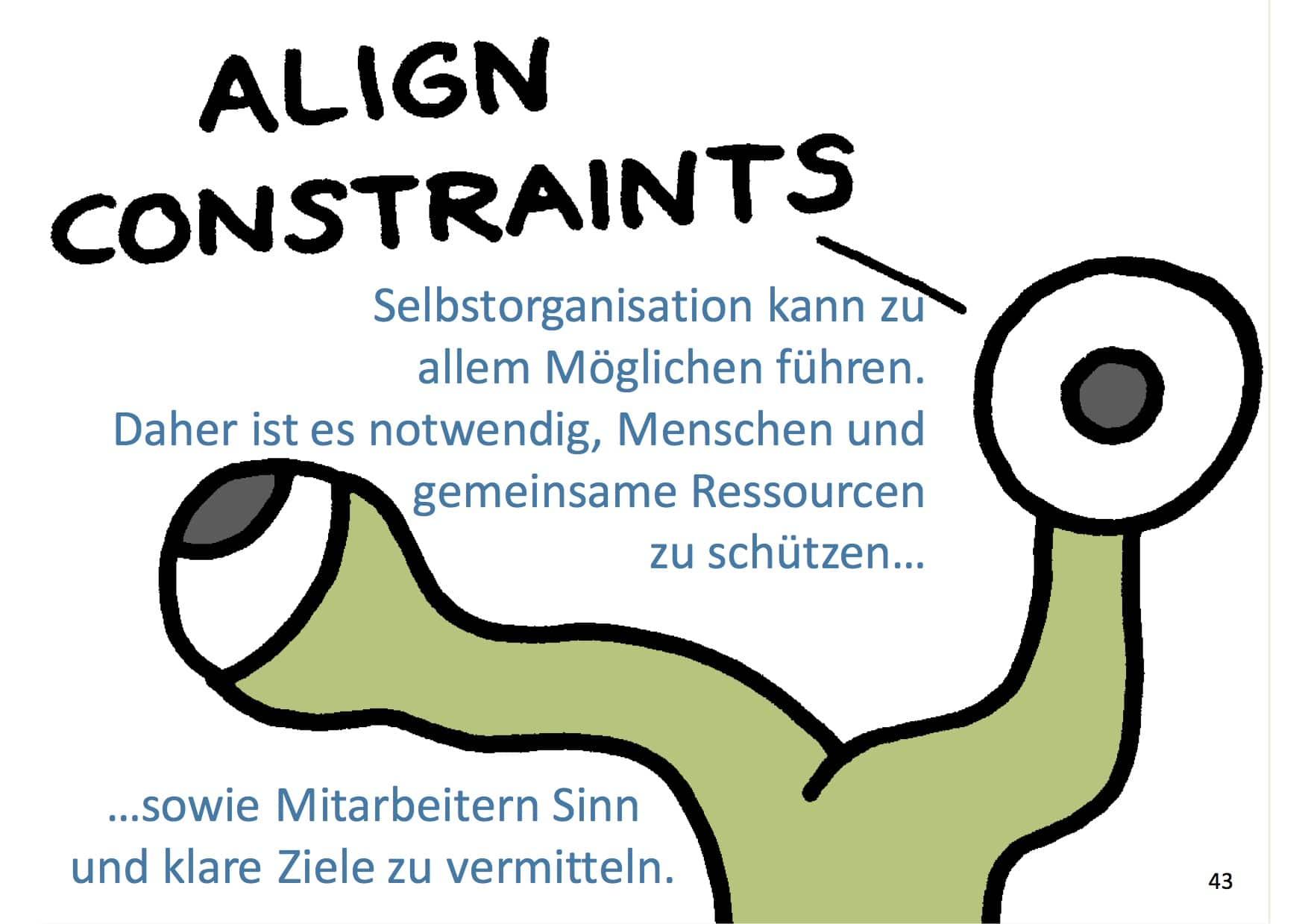 Management 3.0 Align Constraints