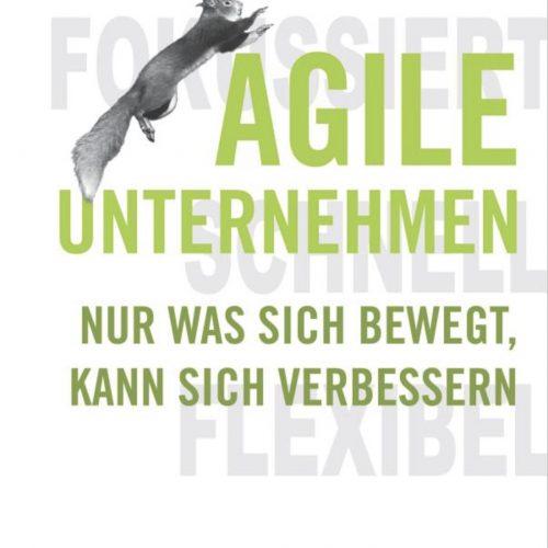 Agile Unternehmen Buch von Valentin Nowotny