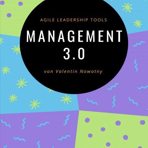 Management 3.0 eBook zum Download